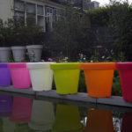 Bloom-Pot-40-60-90-100-farbig